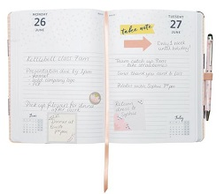 page-a-day-diary