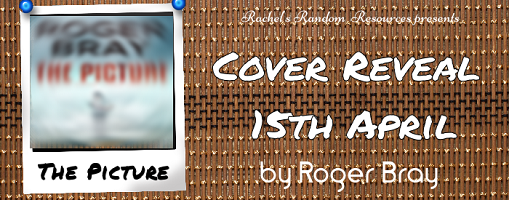 The Picture - Cover Reveal