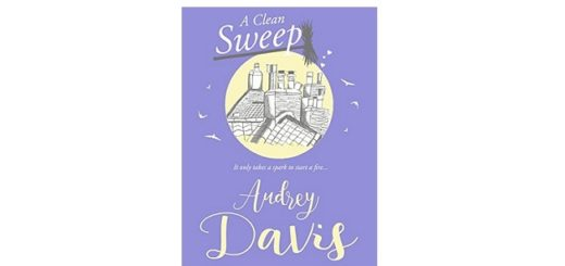 Feature Image - A Clean Sweep by Audrey Davis